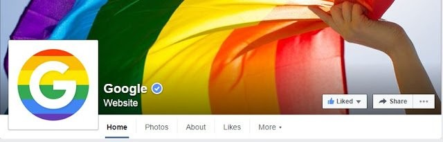 Example of Verified Facebook Page