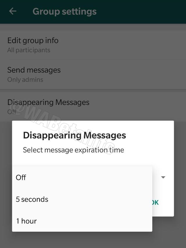 whatsapp self destructing messages